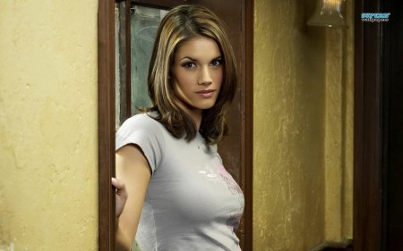 Missy Peregrym Stick It