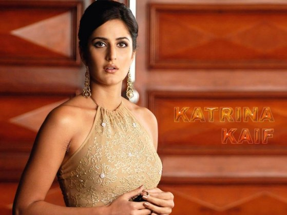 Katrina Kaif Without Clothes Wallpapers Cute And Lovely Katrina In Bikini And Hot Poses Without Clothes