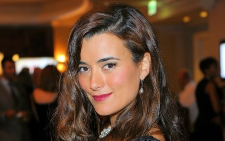 Cote De Pablo Monte Carlo Cocktail Party Tiva Wallpaper