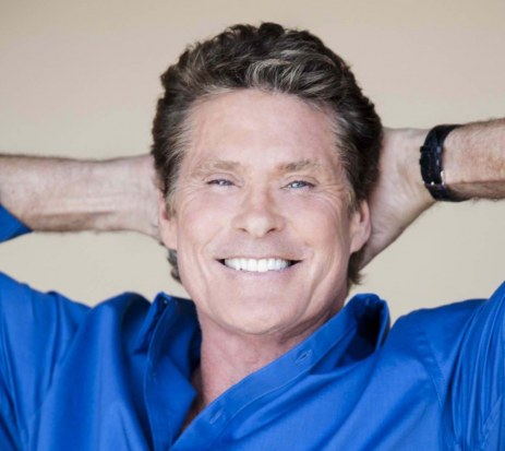 David Hasselhoff Plastic Surgery After Body