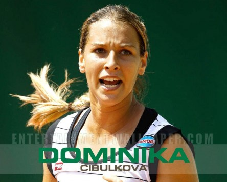 Dominika Cibulkova Desktop Wallpaper Sport