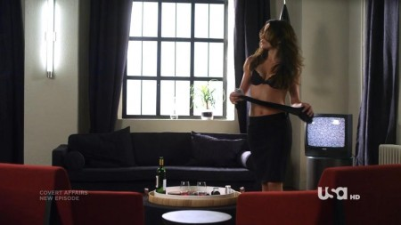 Emmanuelle Vaugier Bra Scene Covert Affairs