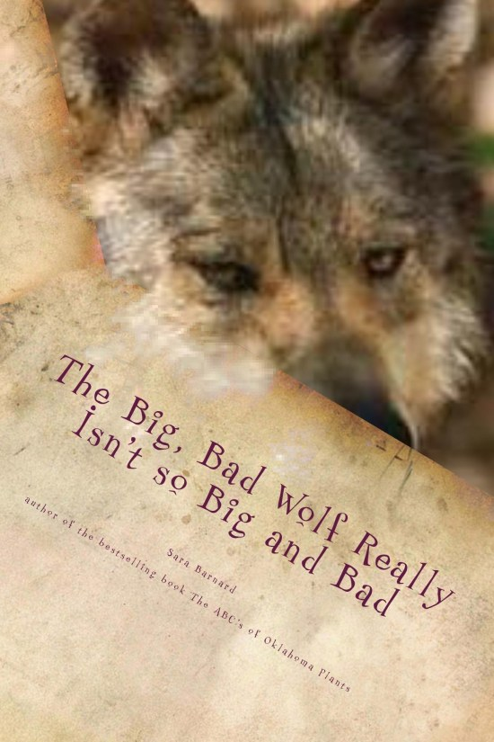 The Big Bad Wolf Re Cover For Kindle
