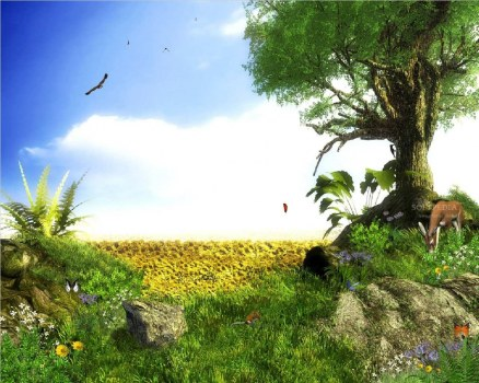 Animated Wallpaper Free Moving Wallpapers