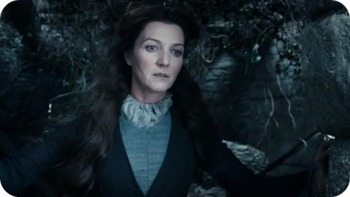Catelyn Stark Game Of Thrones Fashion