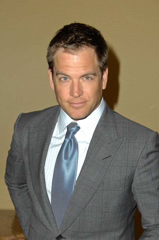 Th Annual Icg Publicist Awards Michael Weatherly And Son