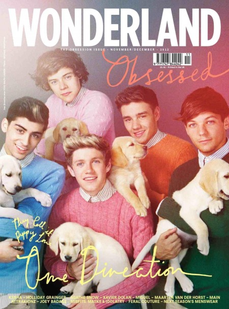 Cover Onedirection