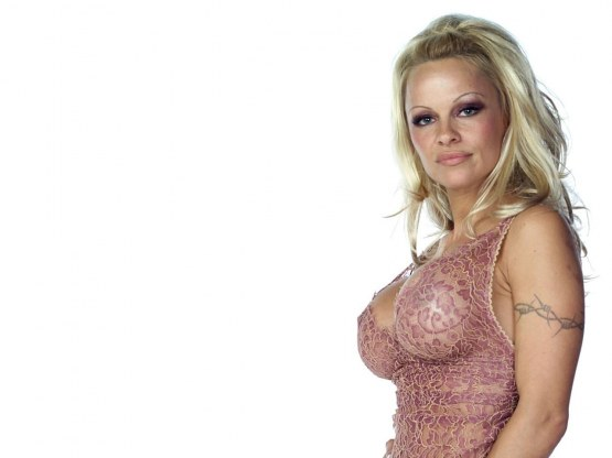 Pamela Anderson International Model Sexy Wallpaper