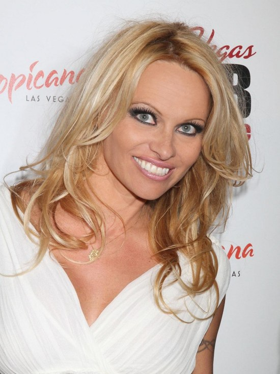 Pamela Anderson Pambition Com Event Sexy Baywatch Tommy Lee Kid Rock Tommy Lee