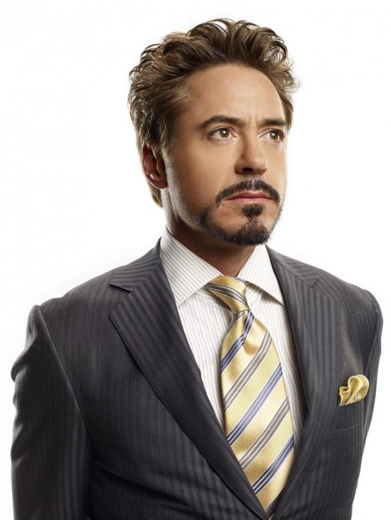 Robert Downey Jr Celebrity