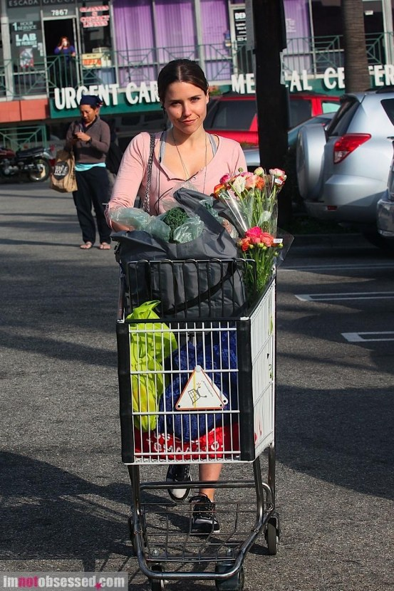 Sophia Bush Heads Home From Whole Foods