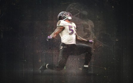 Terrell Suggs Wallpaper Wide Wallpaper