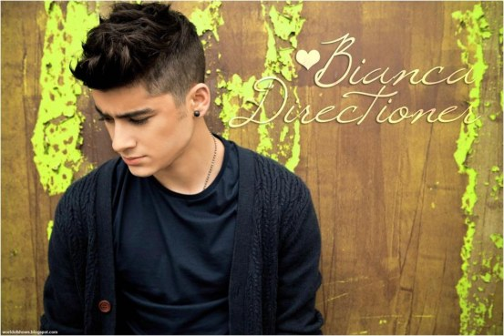 Zayn Malik One Direction Handsome Charismatic Young Star Image Wallpaper